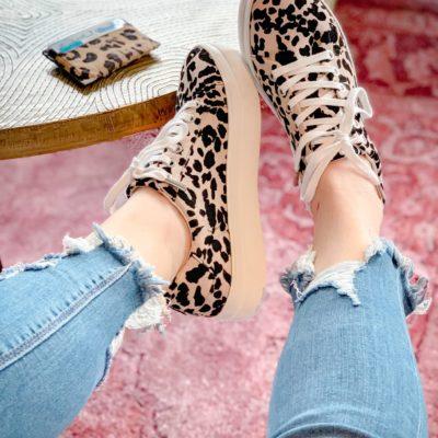 Leopard for Spring