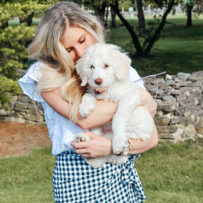Essential Puppy Guide: Everything You Need for a New Puppy (Goldendoodle)